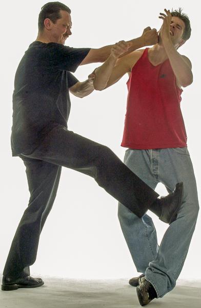Wing Chun Beentechnieken