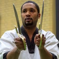 Wing Chun Vlindermessen